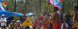 The crocodile is rising: Iris Ray Nunn reports from the Pilliga