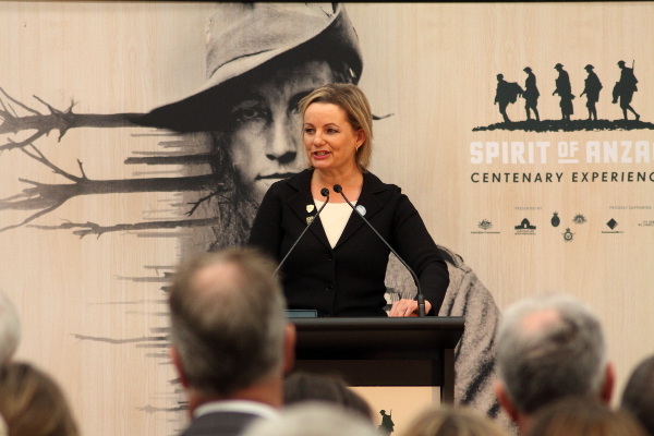 Sussan Ley from the electorate of Farrer addresses people gathered at the Spirit of Anzac exhibiton opening in Wodonga, Cathy McGowan's electorate of Indi. Photo: Wayne Jansson
