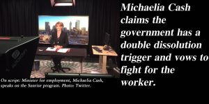 'We will fight for the worker' - Michaelia Cash threatens double dissolution