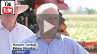 ABC News 24: Turnbull Govt's promise of Rookwood Weir at Rockhampton hasn't passed a feasibility study.