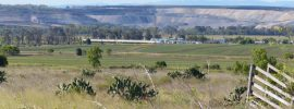Dining over mining: Qld Land Court Rules against New Acland coal mine – @takvera